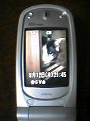 b0001864_2155393.jpg
