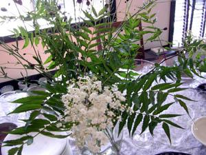市場の花たち。_a0026127_12513848.jpg