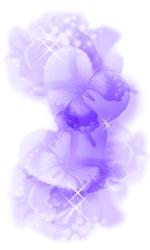 b0010038_0514114.jpg