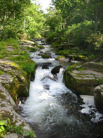 激流の滝_b0011095_23412159.jpg