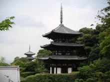 當麻寺(たいまでら)_b0008289_1818479.jpg