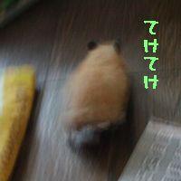 b0016983_20482017.jpg