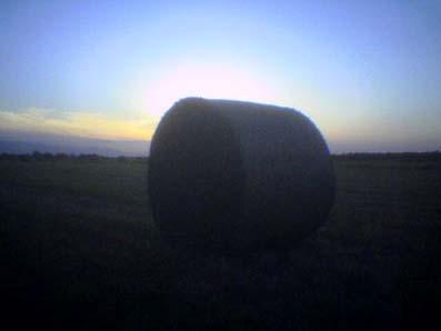 夏の終わりの牧草ロール_a0024535_20142028.jpg