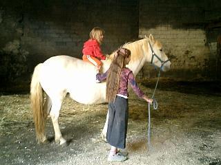 エジプトの馬、フランスの馬_b0001864_14522966.jpg