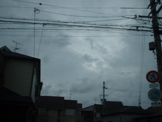 a0023353_1757221.jpg