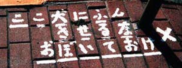 b0010884_0361338.jpg