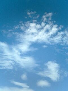 b0014350_2011631.jpg