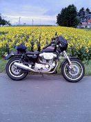 b0026671_19431454.jpg