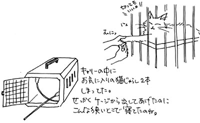 b0028155_165074.jpg