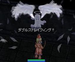 b0007690_5131963.jpg