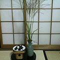 b0030935_20122350.jpg