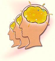 モルヒネは人間の脳で自然に生成される!_a0028694_7451824.jpg