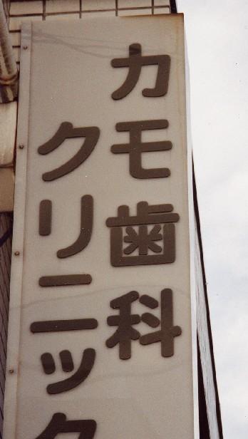 「それを言うならカモシカの脚のような足や」(by松本人志)_a0037241_2311224.jpg
