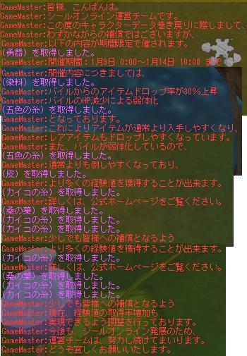 b0023445_23482364.jpg