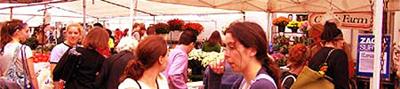 NYユニオン・スクエアの楽しみ方-グリーン・マーケット編_b0007805_23263851.jpg