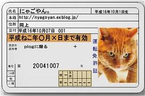 b0035617_9201939.jpg