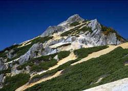 アクアリウムと登山_b0024412_1951827.jpg