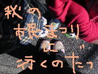 b0016206_1611767.jpg
