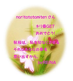 b0031385_1122194.jpg