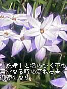 b0023052_21522198.jpg