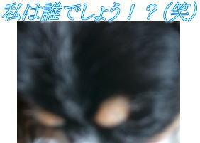 b0032962_23224643.jpg