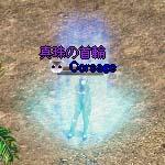 b0048563_1334176.jpg