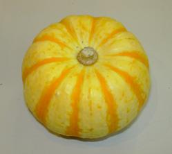 ハロウィーンかぼちゃ_a0001354_13591249.jpg