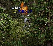 b0050075_1122107.jpg