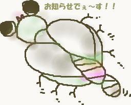 b0016976_1345348.jpg