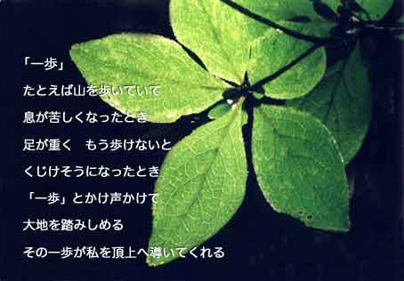 b0044724_1424416.jpg