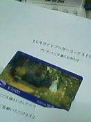 a0010805_2014361.jpg