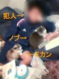 a0013479_13294384.jpg
