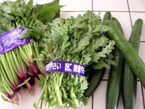 市場の収穫。_a0026127_13315059.jpg