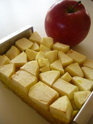 さつまいもとりんごがあれば_b0048834_11493944.jpg