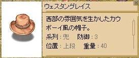 b0034303_1185948.jpg