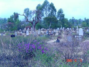 ★治安の悪い国での危機回避実体験2⇒墓場はレイプされ 生き埋めにされた若い女性の遺体だらけだった。_a0028694_4322397.jpg
