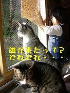 b0059154_23462341.jpg