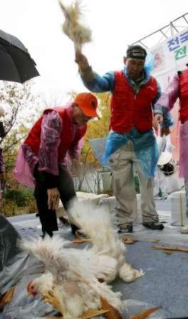 http://pds.exblog.jp/pds/1/200411/11/37/a0029437_2057217.jpg