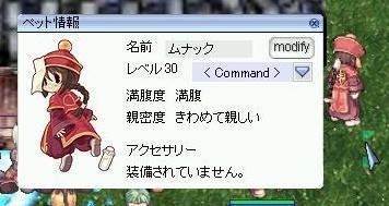 b0049278_3432030.jpg