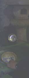 b0031524_8241137.jpg