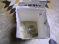 廃油石鹸と蜜蝋キャンドル_b0057979_0273699.jpg