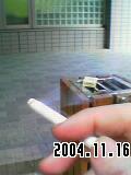 b0050041_1285163.jpg