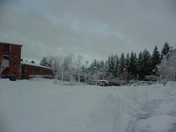 初雪が降りました_b0046331_956516.jpg