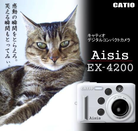 a0014810_16125064.jpg