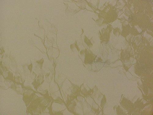 セピア色の水たまり_a0022211_9451735.jpg