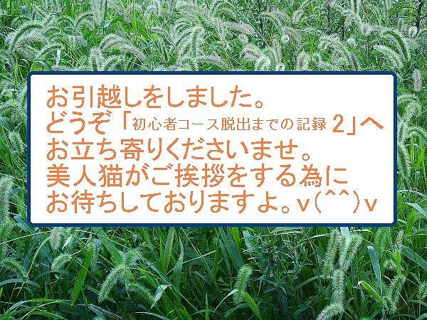 a0023745_14212115.jpg