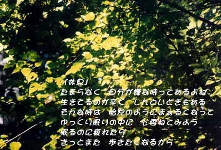 b0044724_227185.jpg
