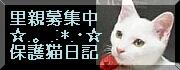 b0024945_16401678.jpg