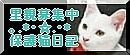 b0024945_17141738.jpg