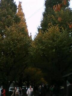 b0024051_1628312.jpg